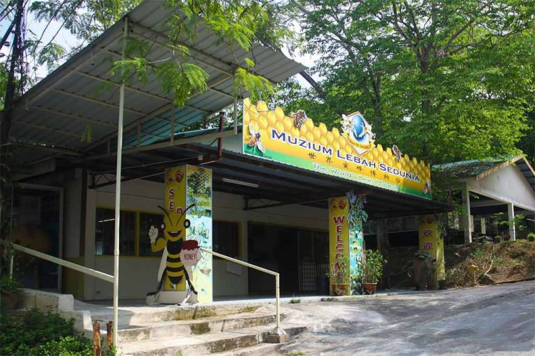 The World's Bees Museum